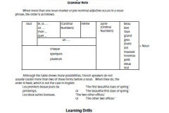 French Grammar & Learning Drills